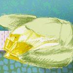 Mandalay-flore-sophie-de-boissieu