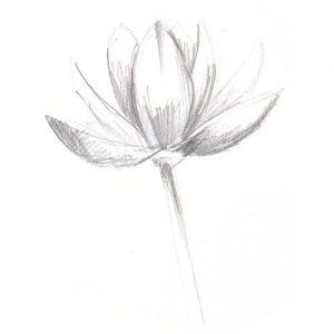 flore-mandalay-sophie-de-boissieu
