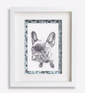 portrait animalier dessin-au-crayon-bouledogue-français-yucca-sophie-de-boissieu-