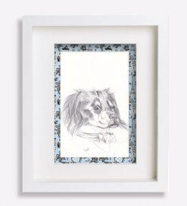 croquis- portrait-dessin-au-crayon-de-epagneul-breton-malo-sophie-de-boissieu-