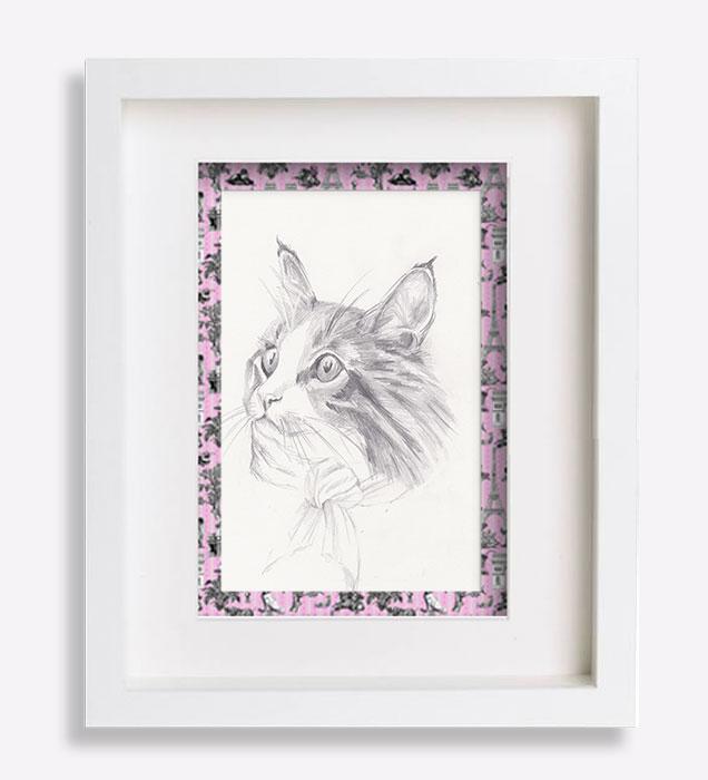 portrait animalier dessin croquis-au-crayon-du-chat-minette-sophie-de-boissieu-