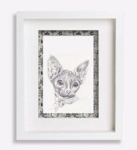 portrait animalier dessin-au-crayon-du-chat-sphynx-sophie-de-boissieu-