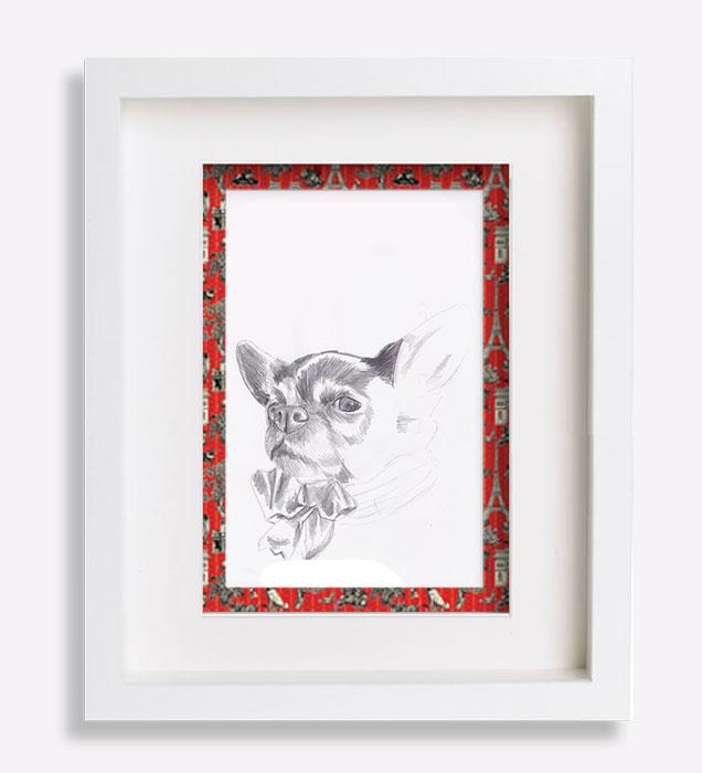 portrait-dessin-au-crayon-du-chihuahua-hedden-sophie-de-boissieu-