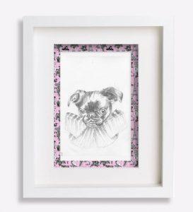 portrait animalier dessin-au-crayon-du-petit-brabançon-jacobine-2-sophie-de-boissieu-