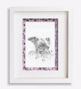 portrait animalier dessin-au-crayon-du-petit-brabançon-jacobine-3-sophie-de-boissieu-