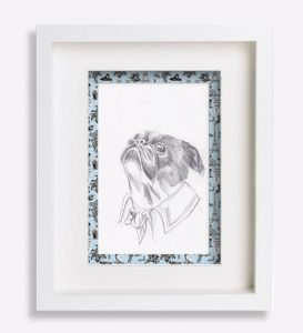 portrait animalier dessin-au-crayon-du-petit-brabançon-robespierre-dessin-sophie-de-boissieu