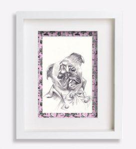 portrait animalier dessin-au-crayon-du-petit-brabançon-robespierre-5-sophie-de-boissieu-