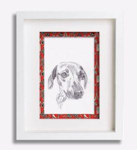 portrait animalier dessin-au-crayon-du-teckel-'chanel'-sophie-de-boissieu-