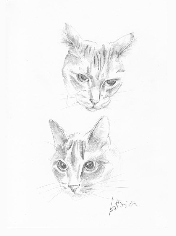 deux chats - deux Portraits sur mesure 21 X 30 cm