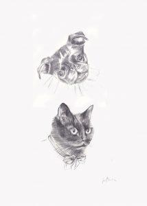 Petit-brabançon et chat - deux Portraits sur mesure 50 X 70 cm