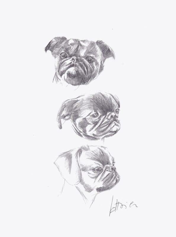 Trois petits brabançons - trois Portraits sur mesure 21 X 30 cm